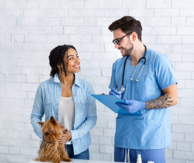 Positive veterinarian doctor communicating with cute dog's owner in medical office